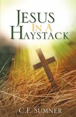 Jesus in a Haystack