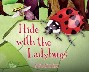 Hide with the Ladybugs