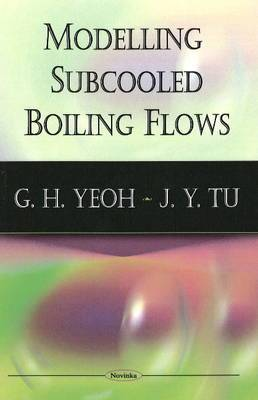 Modelling Subcooled Boiling Flows