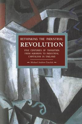 Rethinking the Industrial Revolution: Historical Materialism, Volume 49