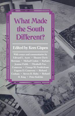 What Made the South Different?