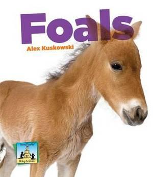 Foals