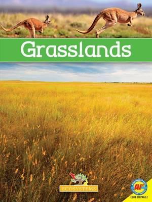 Grasslands with Code