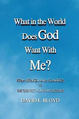 What in the World Does God Want with Me?: From Broken and Scarred to the Greatest Honor in Existence