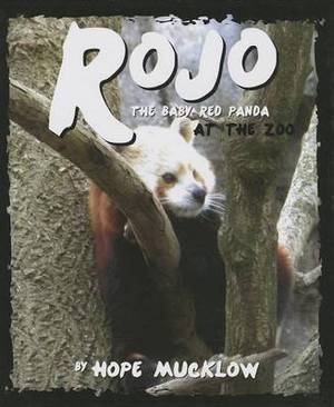 Rojo the Baby Red Panda at the Zoo: An Allegory about Self-Worth Through a Red Panda and Giant Panda Comparison