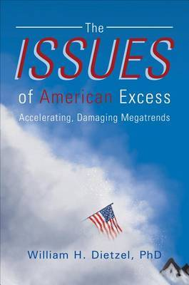 The Issues of American Excess: Accelerating, Damaging Megatrends