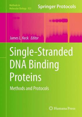 Single-Stranded DNA Binding Proteins: Methods and Protocols