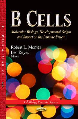 B Cells: Molecular Biology, Developmental Origin & Impact on the Immune System