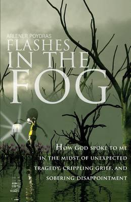 Flashes in the Fog: How God Spoke to Me in the Midst of Unexpected Tragedy, Crippling Grief, and Sobering Disappointment