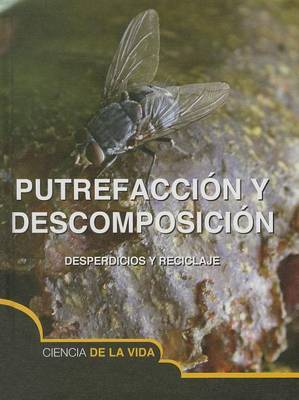 Putrefaccion y Descomposicion (Rot and Decay)