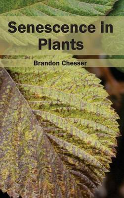 Senescence in Plants