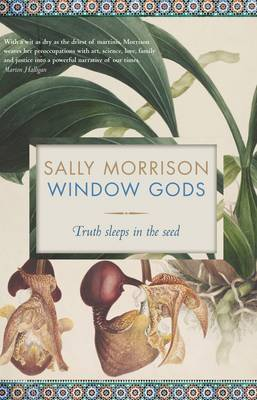 Window Gods: Truth Sleeps in the Seed
