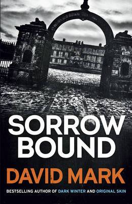 Sorrow Bound: The 3rd DS McAvoy Novel