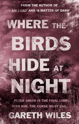 Where the Birds Hide at Night