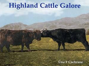 Highland Cattle Galore