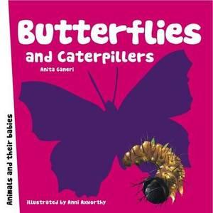 Butterflies and Caterpillars