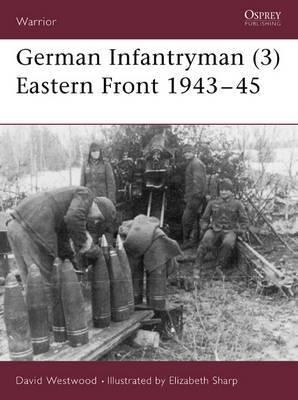 German Infantryman: Eastern Front, 1943-45: 3