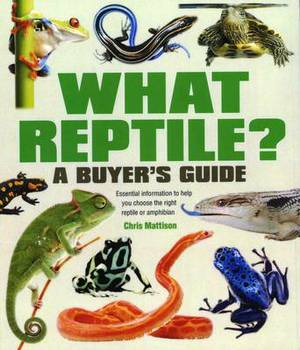 What Reptile? A Buyer's Guide: Essential Information to Help You Choose the Right Reptile or Amphibian