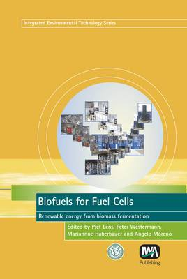 Biofuels for Fuel Cells