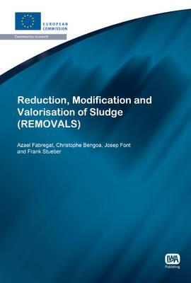 Reduction, Modification and Valorisation of Sludge