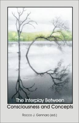 The Interplay Between Consciousness and Concepts