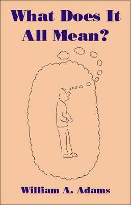 What Does it All Mean?: A Humanistic Account of Human Experience