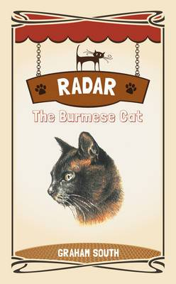 Radar the Burmese Cat