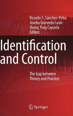 Identification and Control: The Gap Between Theory and Practice
