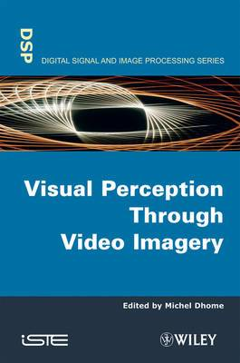 Visual Perception Through Video Imagery
