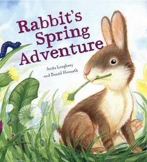 Rabbit's Spring Adventure