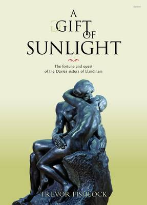 A Gift of Sunlight: The Fortune and Quest of the Davies Sisters of Llandinam'