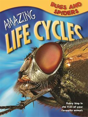 Amazing Life Cycles: Bugs and Spiders