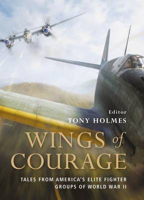 Wings of Courage: American Fighters in World War II