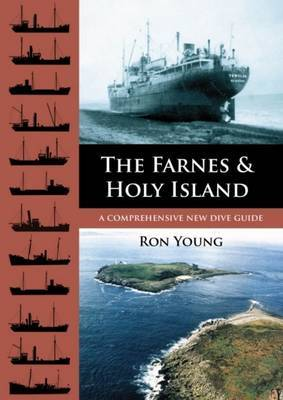 The Farnes and Holy Island: A Comprehensive New Dive Guide