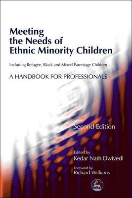 Meeting the Needs of Ethnic Minority Children - Including Refugee, Black and Mixed Parentage Children: A Handbook for Professionals