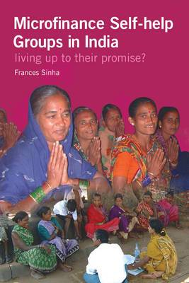 Microfinance Self-help Groups in India: Living Up to Their Promise?