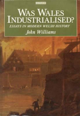 Was Wales Industrialised?: Essays in Modern Welsh History