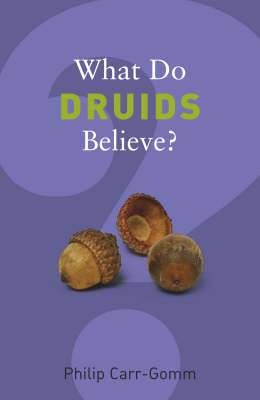 What Do Druids Believe?