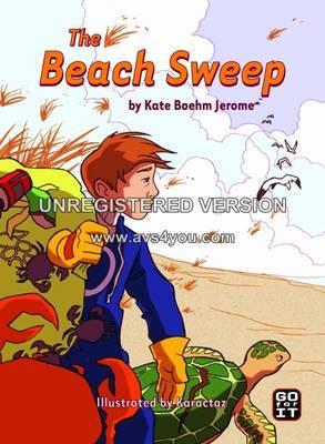 The Beach Sweep