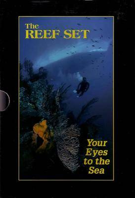 Reef Set: Your Eyes to the Sea