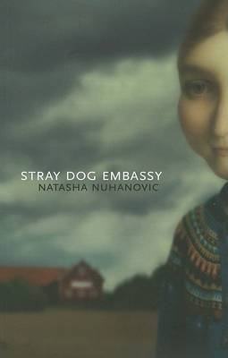 Stray Dog Embassy