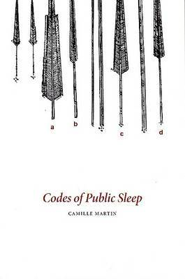 Codes of Public Sleep
