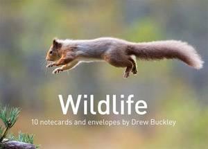 Wildlife by Drew Buckley