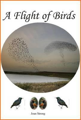 A Flight of Birds