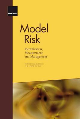 Model Risk: Identification, Measurement and Management