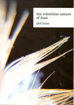The Relentless Nature of Dust