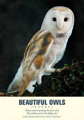 Beautiful Owls Journal