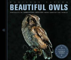 Beautiful Owls: Portraits of Arresting Species from Around the World