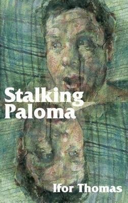 Stalking Paloma