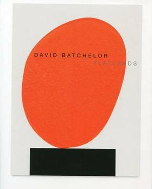 David Batchelor - Flatlands